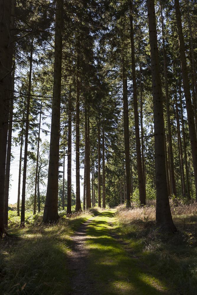 FAB_Blog_Bornholm_2321