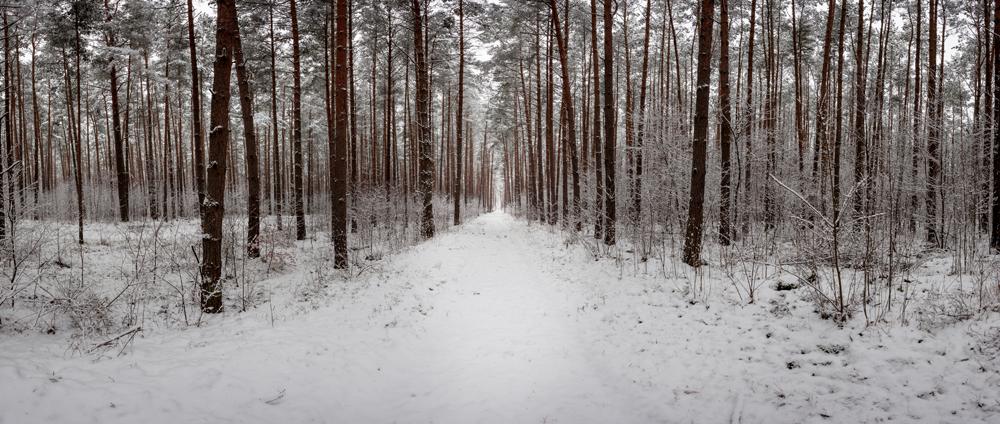FAB_Blog_Winterpanorama_6333