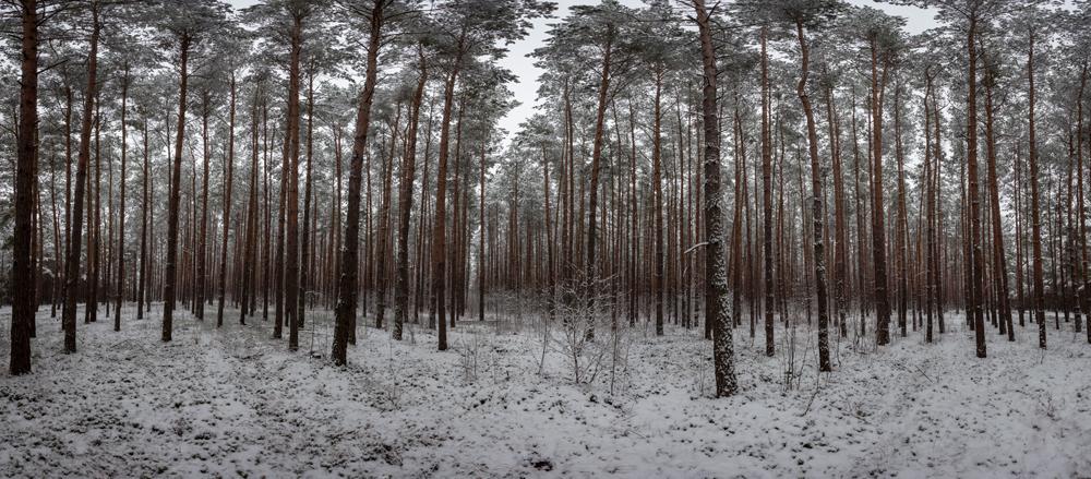 FAB_Blog_Winterpanorama_6378
