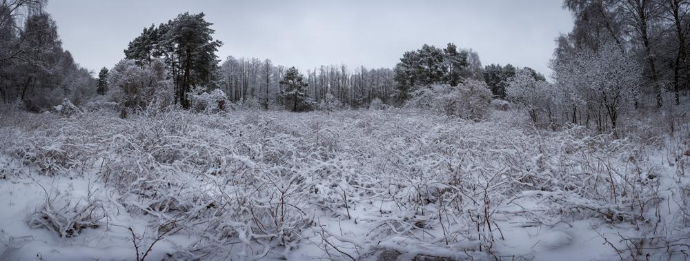 FAB_Blog_Winterpanorama__6405