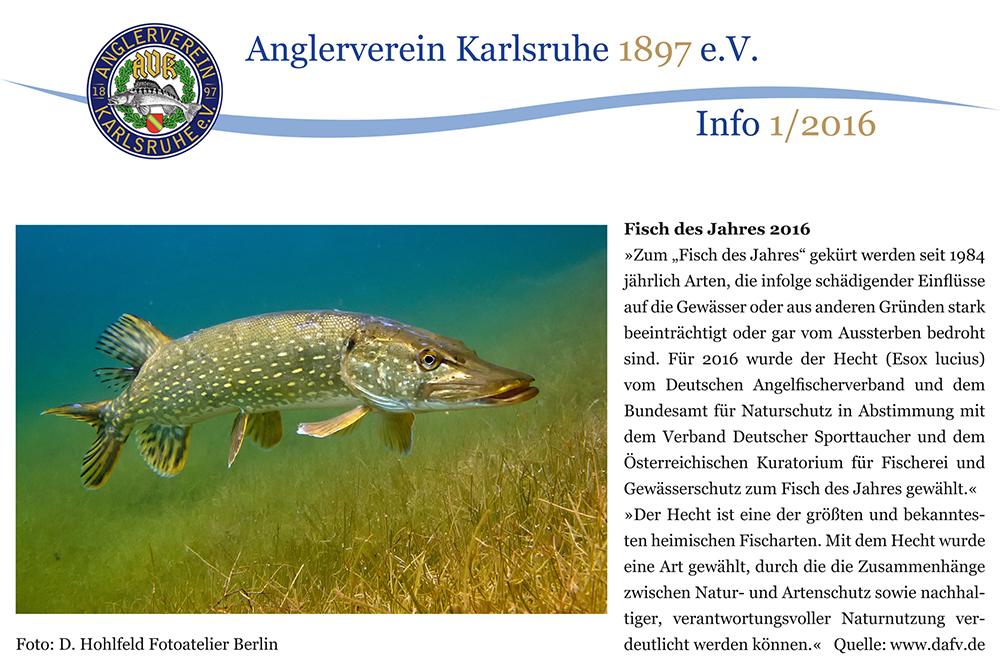 FAB_Blog_Angelverein_Hecht03