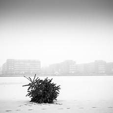 FAB_Shop_Vorschaubild_Weihnachtsbaum