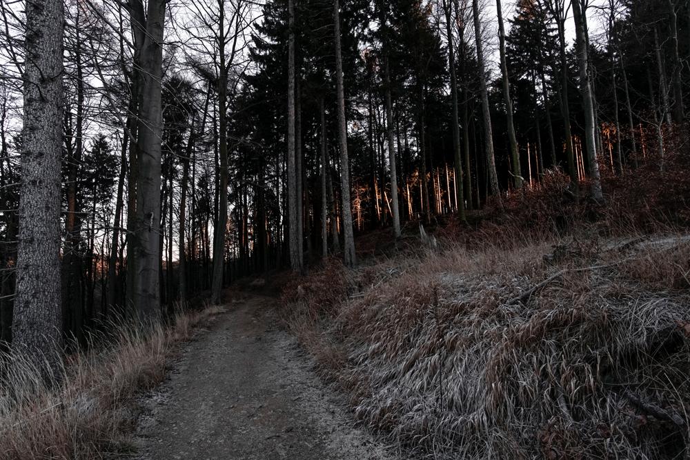 FAB_Blog_Harz_04